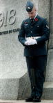 cenataph soldier